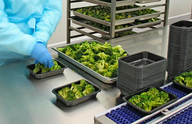 Produzione e Commercializzazione verdure cotte, SiamCotte